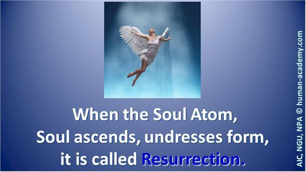 171_AIC_resurrection