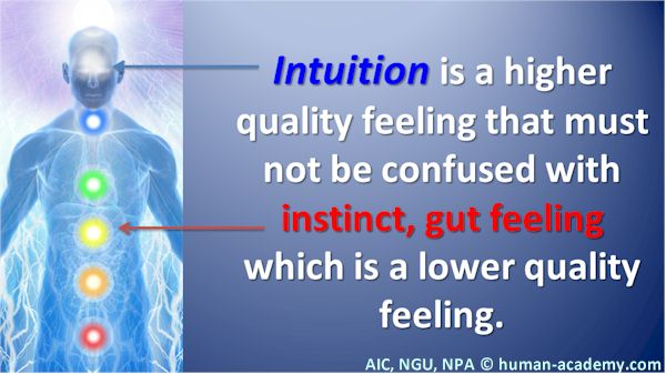 78_AIC_intuition_instinct